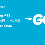 Belajar Golang #36 : Encoding dan Decoding data JSON